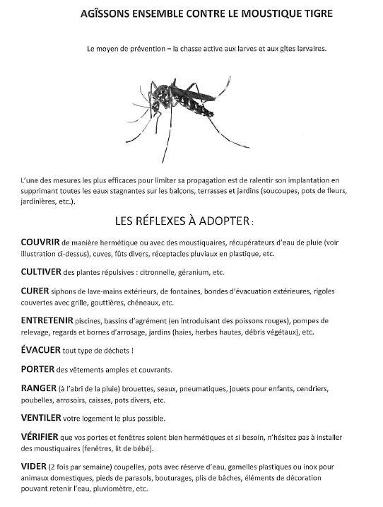 Agir contre le moustique tigre