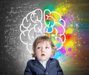 Construction du cerveau des enfants