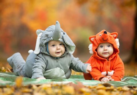 Creche and do vous informe concernant votre bébé, votre enfant et ses premiers amis