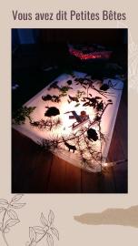 Activité Tables lumineuses et Petites bêtes