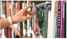 Bibliothèques de Toulouse : réouvertures; Bibliodrives...