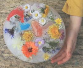 Peindre sur des glaçons fleurs